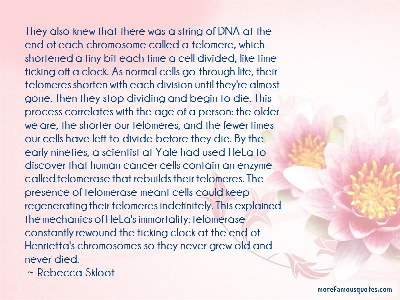 Hela Cells Quotes Pictures 3