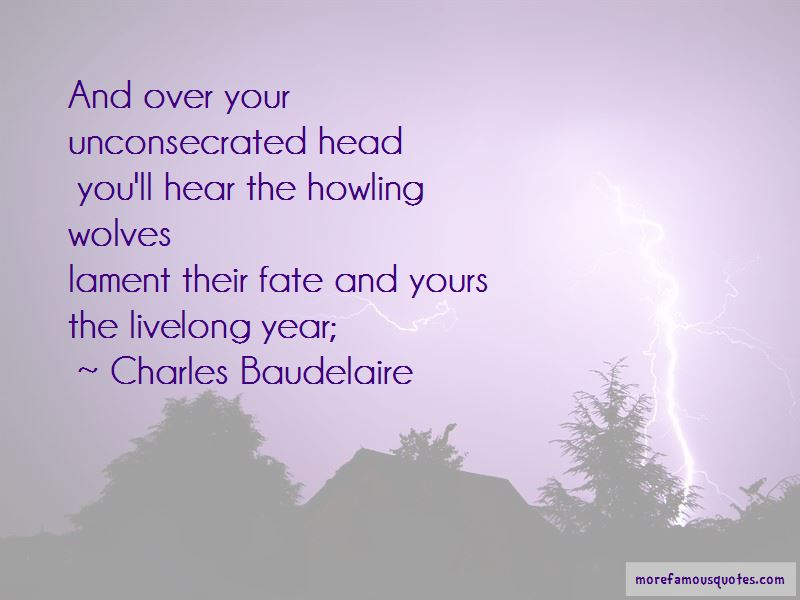 Quotes About Howling Wolves