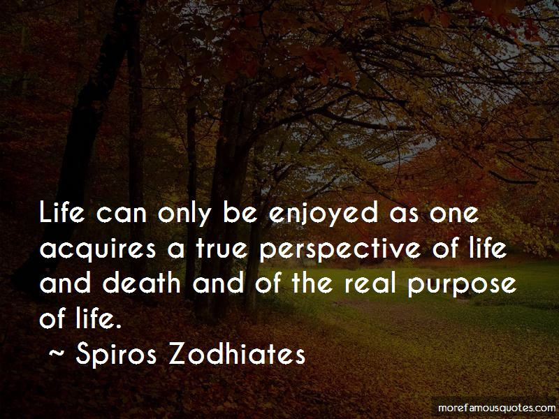 Quotes About Perspective Of Life