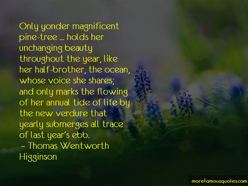 The Ocean And Beauty Quotes Pictures 3