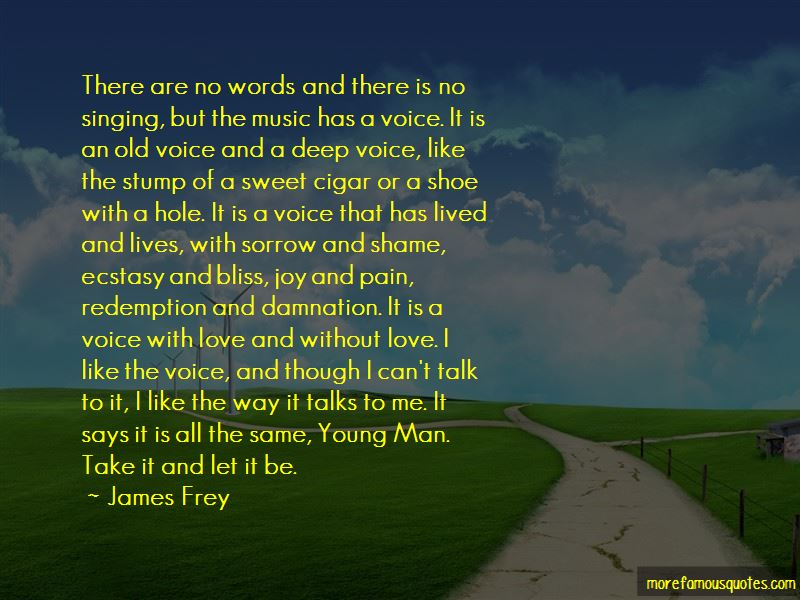 Sorrow Joy Quotes Pictures 4