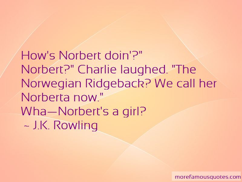 St Norbert Quotes Pictures 4
