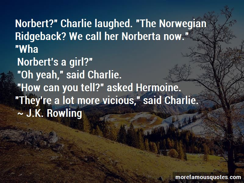 St Norbert Quotes