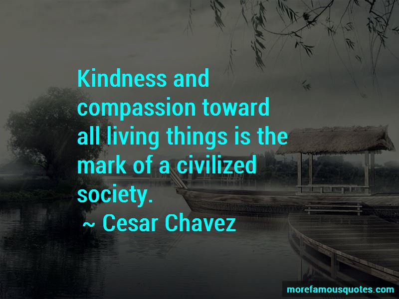 Quotes About Kindness And Compassion Top 81 Kindness And Compassion