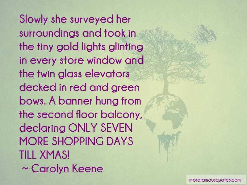 Xmas Shopping Quotes Pictures 2