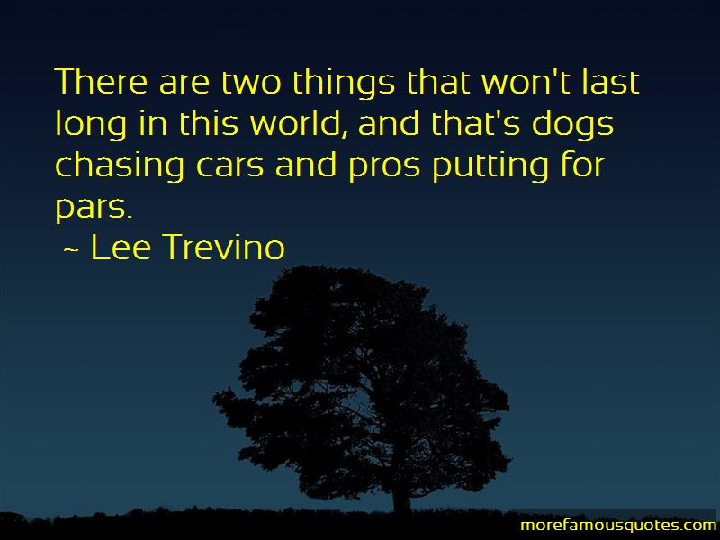 Dogs Chasing Cars Quotes