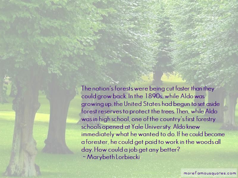 Forest Schools Quotes Pictures 2