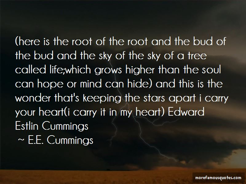 Quotes About Edward