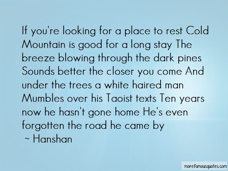Looking Up At Trees Quotes Pictures 3