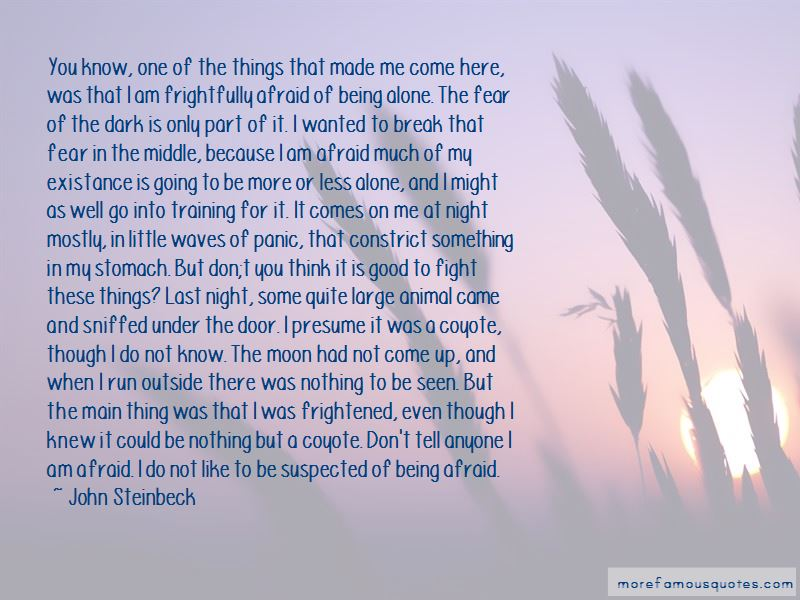 Not Afraid Of Being Alone Quotes Pictures 2