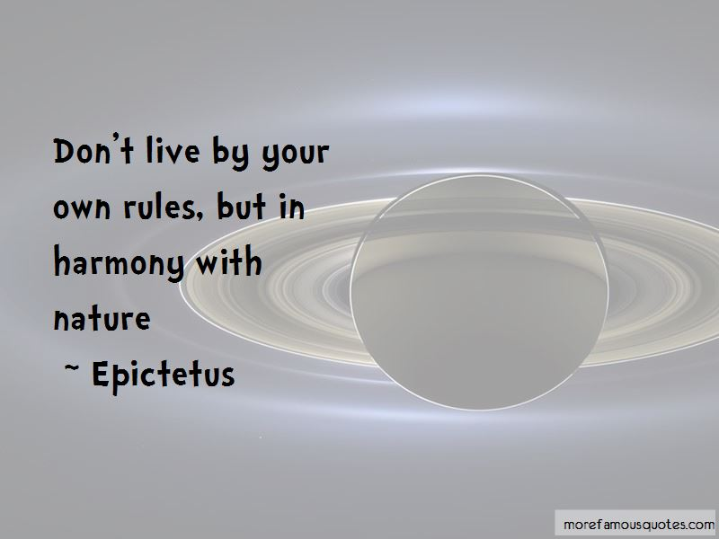 Live By Your Own Rules Quotes Pictures 2