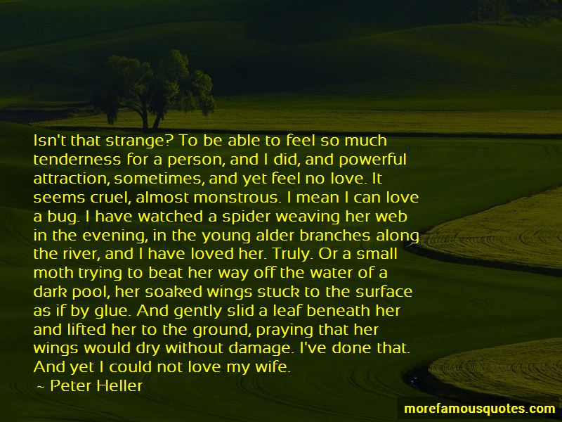 Quotes About Cruel Love