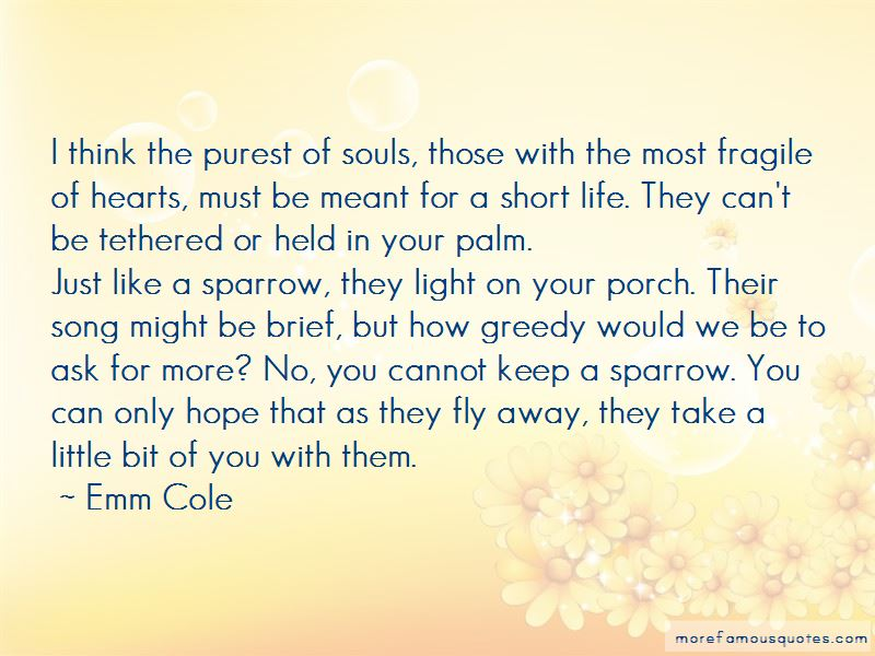 Quotes About Fragile Hearts
