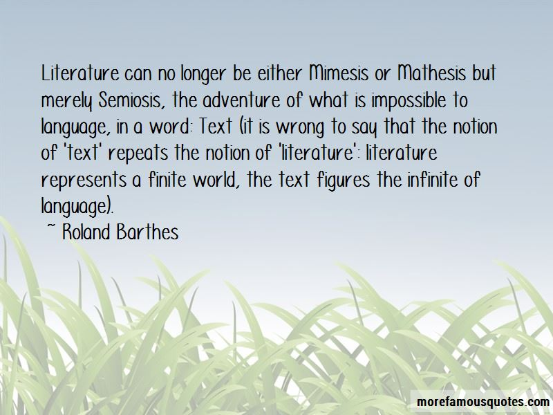 Quotes About Mimesis