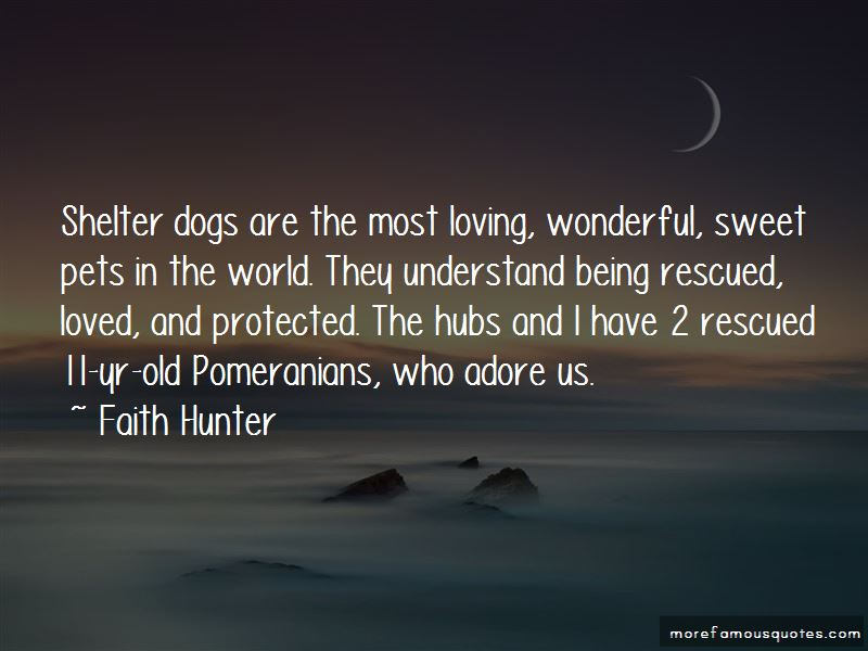 Quotes About Shelter Dogs