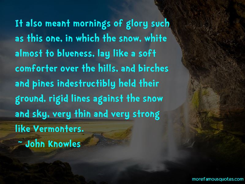 Quotes About Snow Mornings