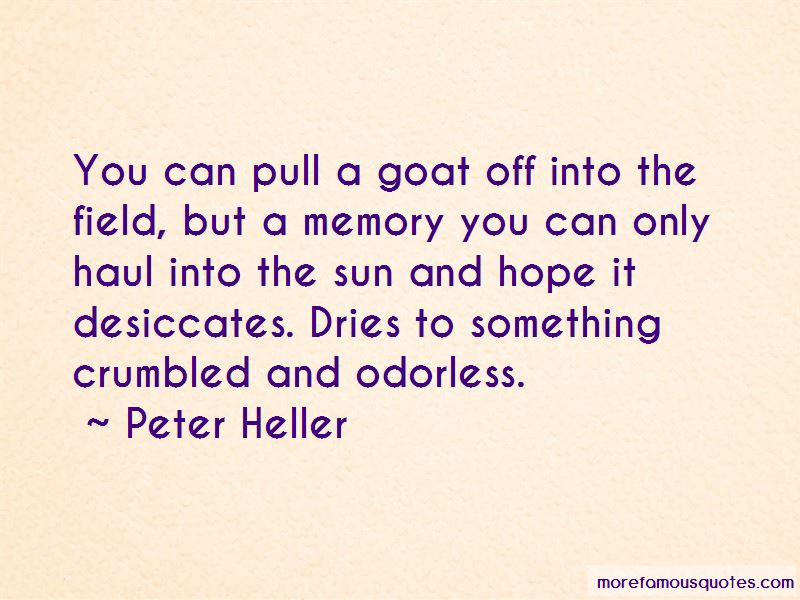 Quotes About Sun And Hope
