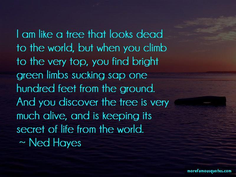 I Am Like A Tree Quotes