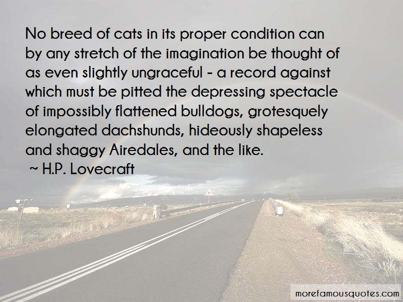 Quotes About Airedales
