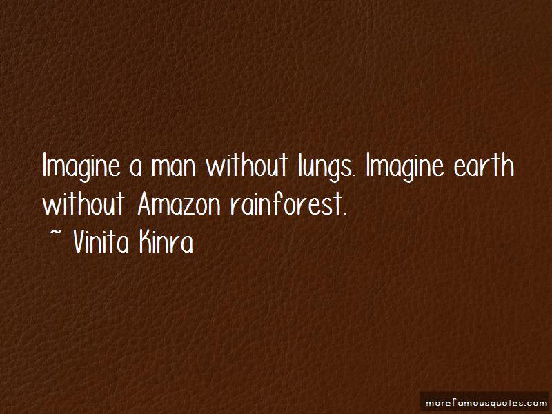 quotes about amazon rainforest top amazon rainforest quotes