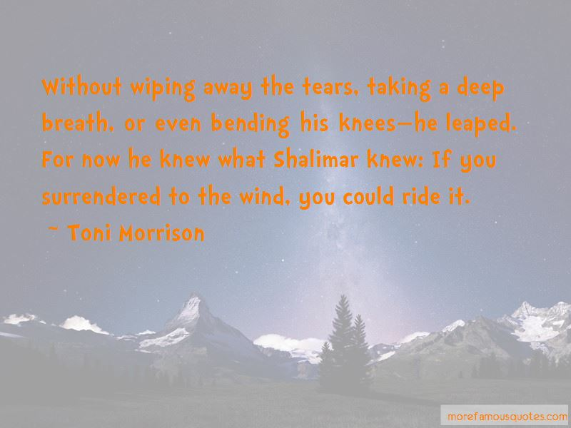 Bending In The Wind Quotes Pictures 3