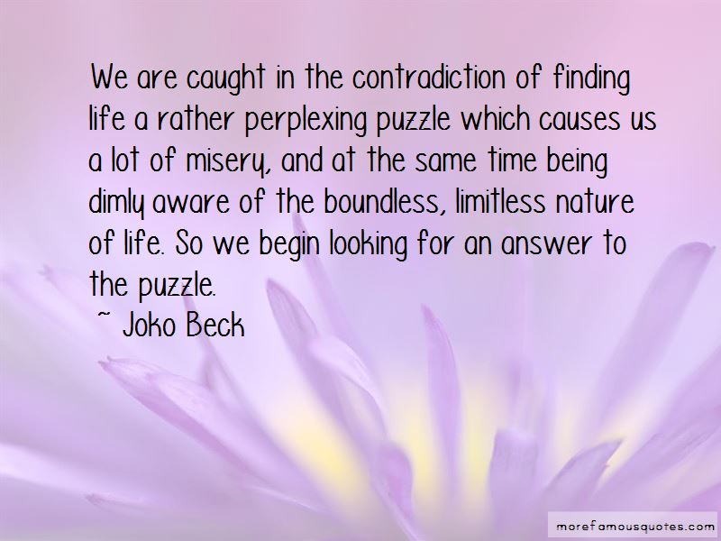 Quotes About Life Being A Puzzle
