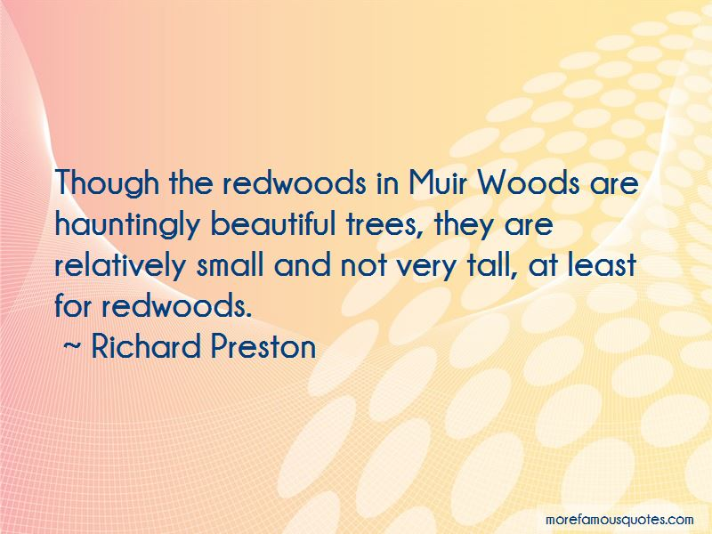 Quotes About Muir Woods