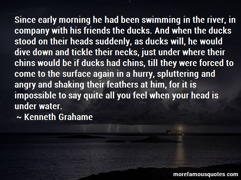 Swimming In The River Quotes Pictures 2