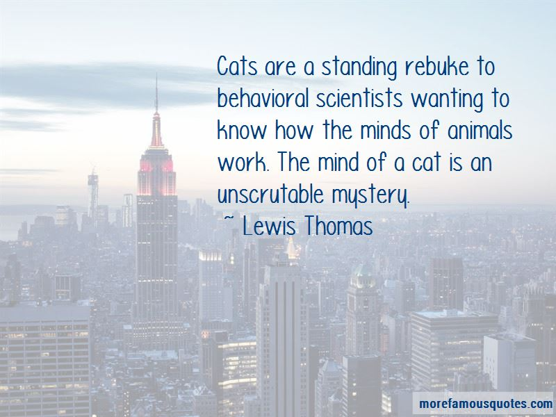 The Mystery Of Cats Quotes Pictures 2