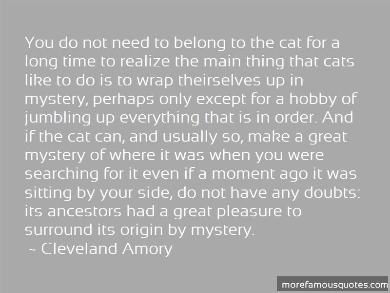 The Mystery Of Cats Quotes Pictures 3
