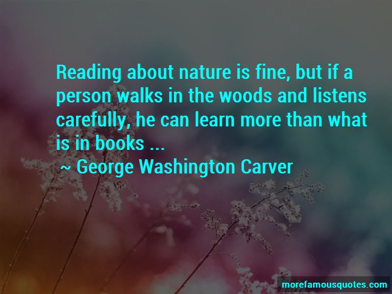 Walks In The Woods Quotes Pictures 3