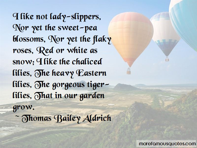 White And Red Roses Quotes Pictures 2