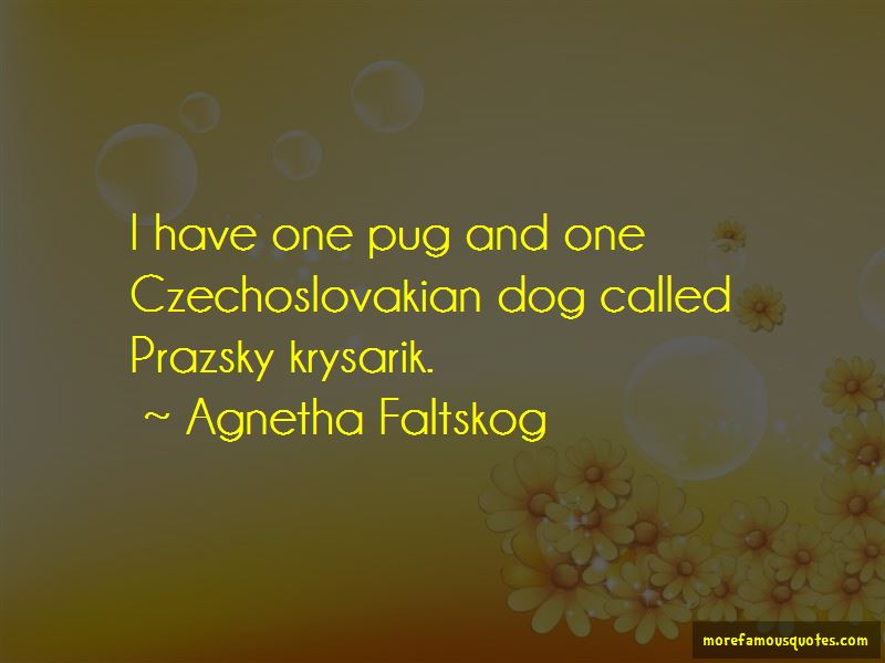 Czechoslovakian Quotes Pictures 2