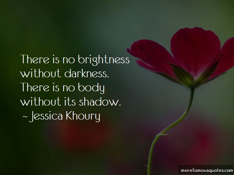 Darkness And Brightness Quotes Pictures 4