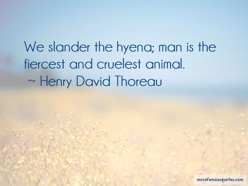 Ed Hyena Quotes
