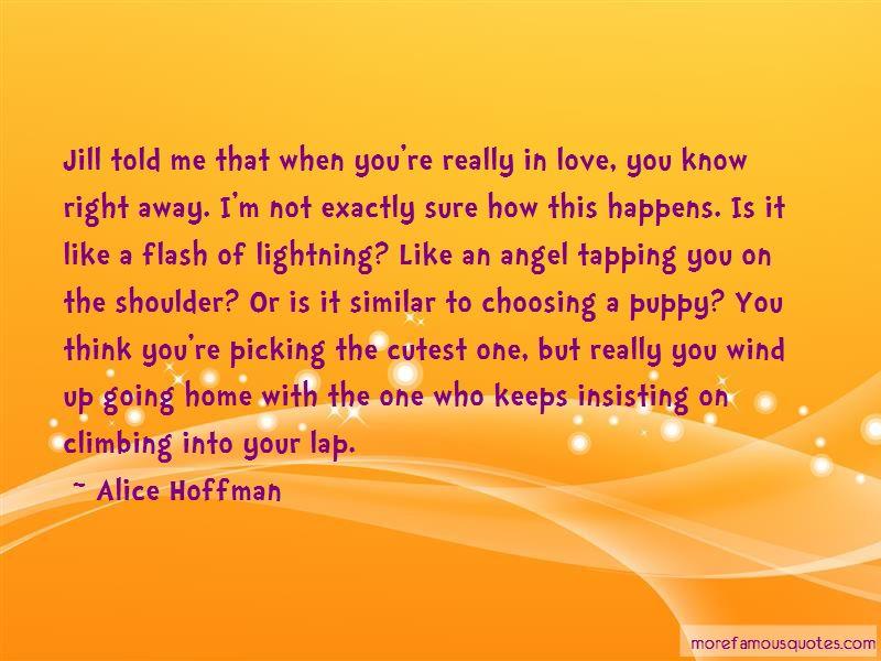 I Like Really Like You Quotes