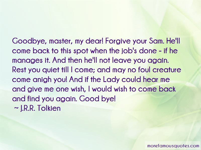 I Wish You Could Forgive Me Quotes