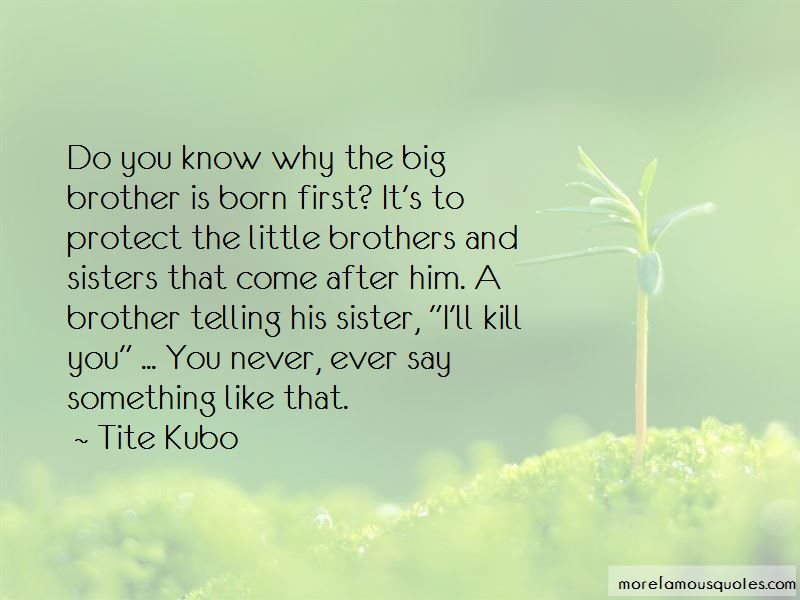 Little Brother And Big Brother Quotes: top 8 quotes about ...