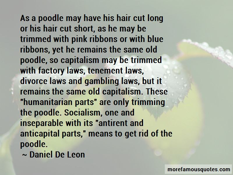 Long Hair Cut Quotes Pictures 3