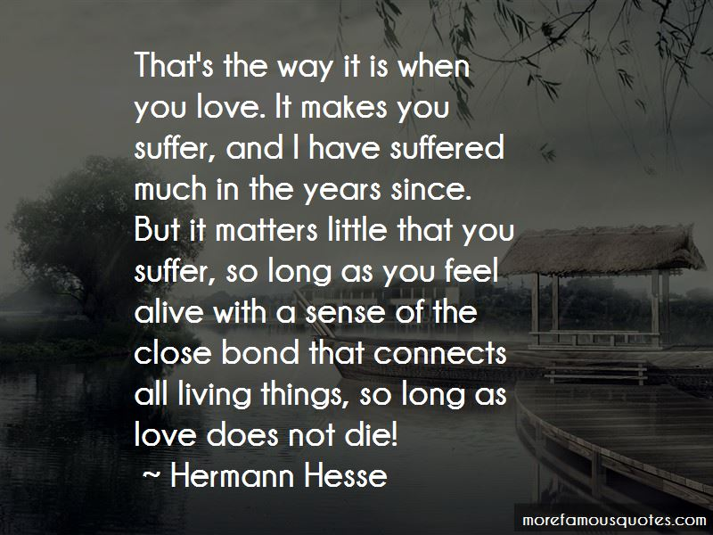 Love Connects Us Quotes