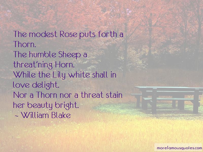 Love Rose Thorn Quotes Pictures 4