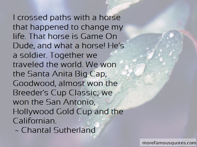 crossed paths quotes