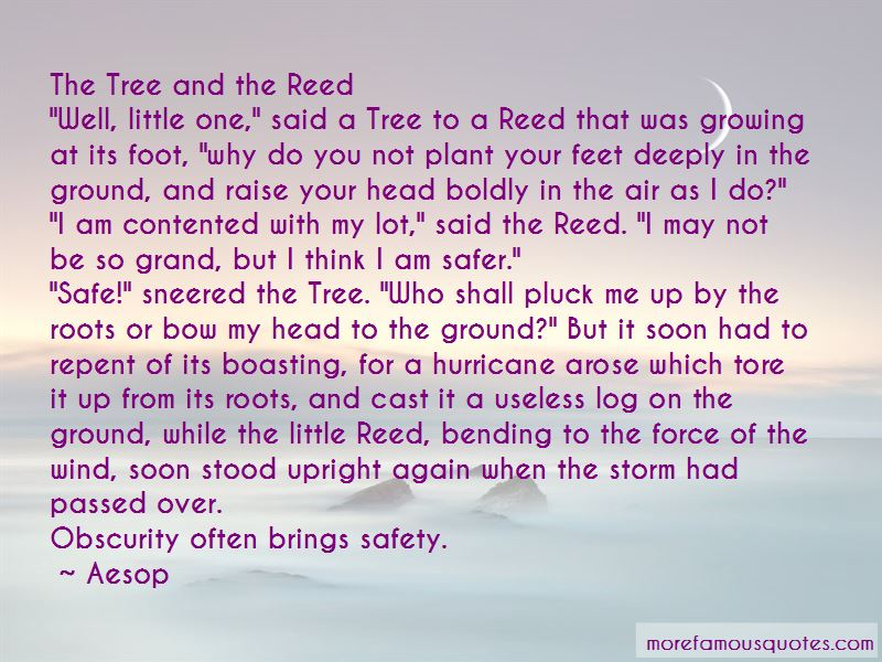 Bending Tree Quotes Pictures 2