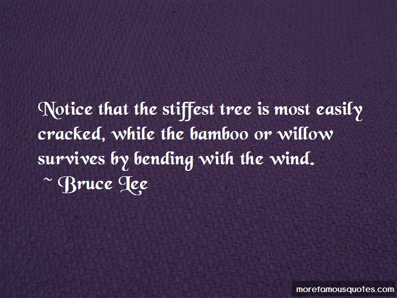 Bending Tree Quotes Pictures 4