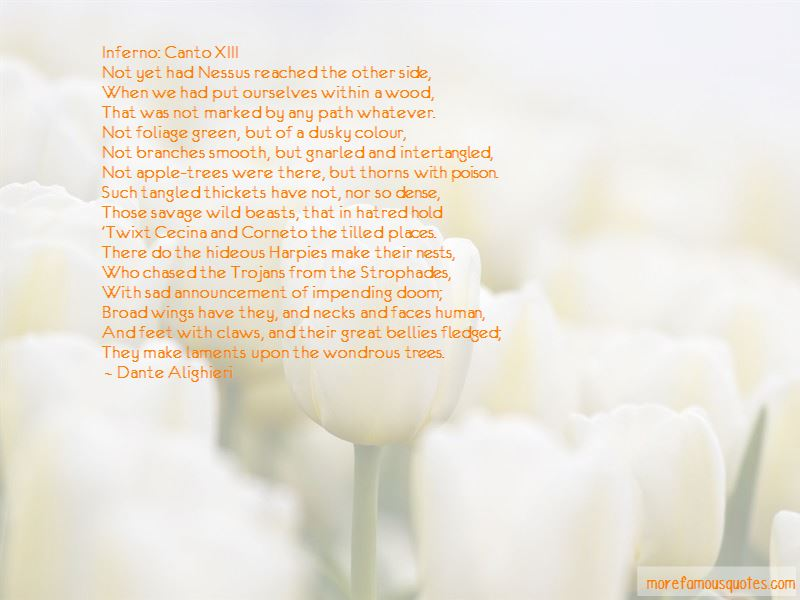 Canto 19 Quotes