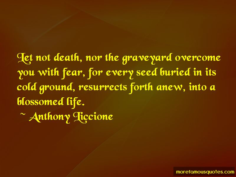 Death Graveyard Quotes Pictures 2
