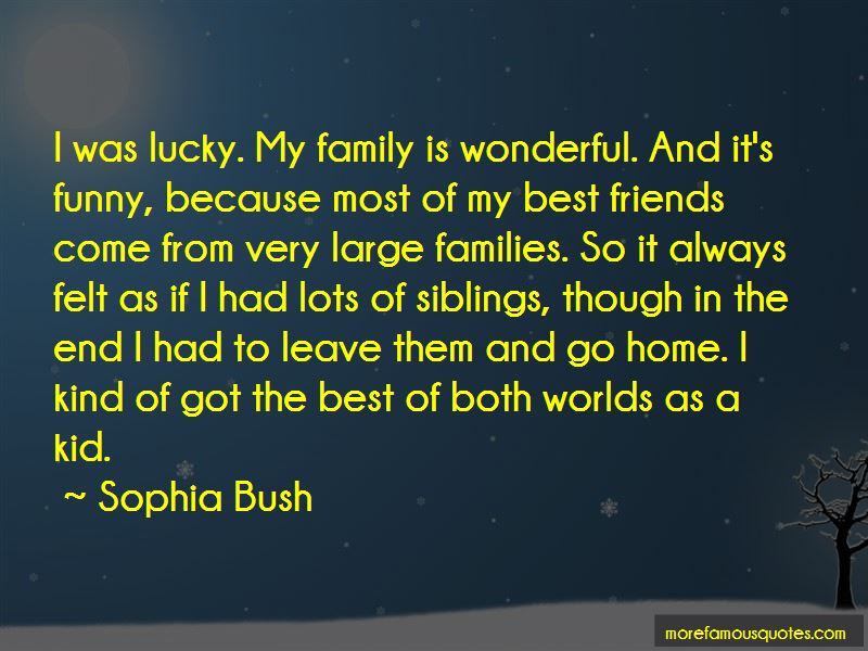 Family Is Wonderful Quotes