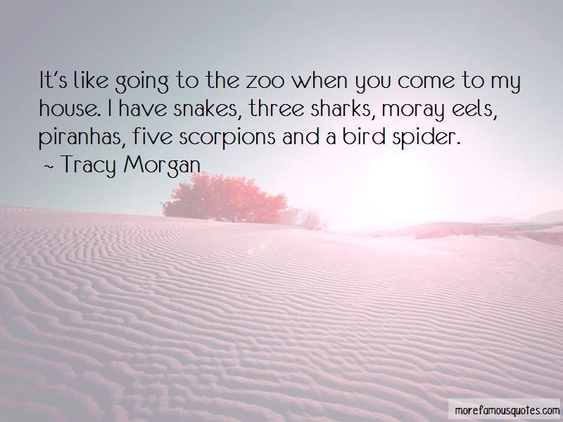 House Of Scorpions Quotes