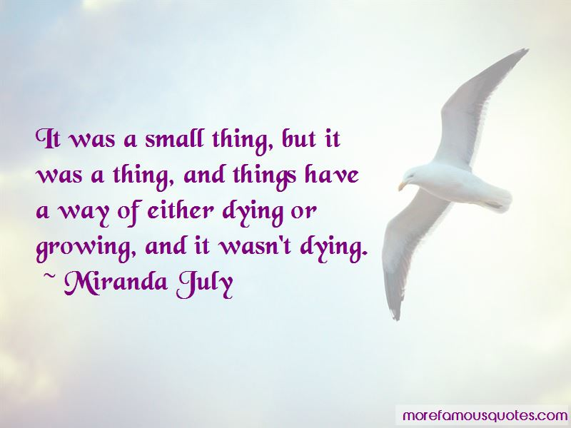 Small Thing Quotes Pictures 2