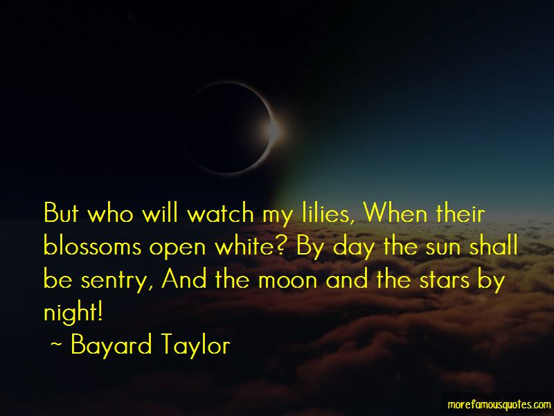 Stars Moon And Sun Quotes Pictures 2